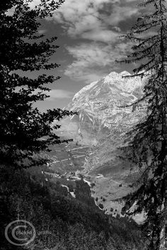 Landscape  black and white  nature photography  by piekfotografie, $25.00