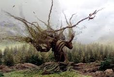 famous trees - Google Search
