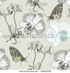 Vector seamless pattern decorative orchid flowers and hand drawn butterflies. Vintage  illustration on spotted background.