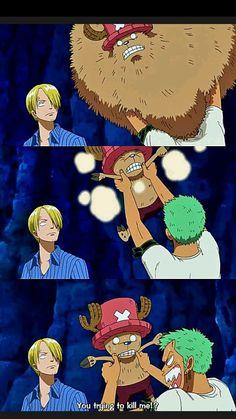 Roronoa Zoro  Sanji Vinsmoke Tony Tony Chopper Straw Hat Crew Pirates Mugiwaras One Piece