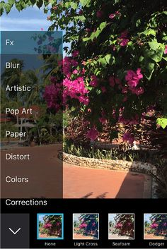 For the ambitious photographer, there are more advanced photo editing  apps that rival digital single lens reflex (DSLR) cameras. Here are five of the best.