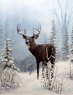Leo Stans Winter Wonder- Deer