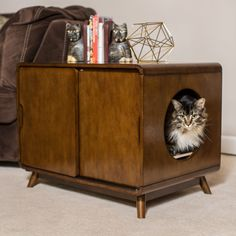 Boomer & George Carter Mid-Century Modern Cat Litter Box - Litter Boxes at Hayneedle