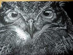 This is the second, and final part, of a tutorial on how to use scratchboard in a very simple way. I hope you liked it. Note: I ended up spending a few more . Owl Art, Bird Art, Scratchboard Art, Scratch Art, Environmental Art, Recycled Art, Stone Art, Art Techniques, Art Tutorials
