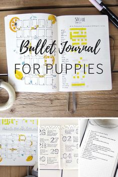 How to set up a Bullet Journal for your new puppy (or dog) with lots of photo's and ideas for reasing a perfectly balanced pup