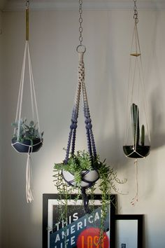 植物を天井から吊るすことができるハンギング。省スペースにもなり、おしゃれなインテリアとして人気です。マクラメ編みのハンギングなら、自分で作ることができるんです。