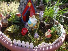 Miniture Gnome Garden