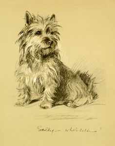 Sally, Who's Calling, Cairn Terrier by Lucy Dawson | Art Posters