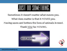 Just keeping moving! Animals in need could use all the help they can get!
