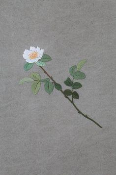 야생화 자수 2 여름 가을에 볼 수 있는 우리 꽃 [2013 / 팜파스]: