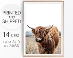 Check out our scottish highland cow selection for the very best in unique or custom, handmade pieces from our shops.