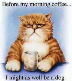 Funny Good Morning Images, Cheap Coffee Maker, Morning Cartoon, Good Morning Coffee, Coffee Break, Coffee Time, Coffee Photos, Coffee Art, Iced Coffee