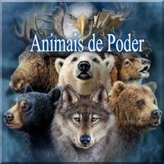 MUITO ALÉM DAS PALAVRAS E SENTIDOS: VIBRAÇÃO NATUREZA - ANIMAL DE PODER
