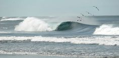 I ❤️ Surfing