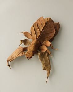 Leaf insect (Phyllidae) by Kota Imai Dó handmade paper - Origami And Kirigami, Origami Paper Art, Paper Crafts, Origami Insects, Origami Animals, Useful Origami, Best Origami, Origami Models, Insect Art