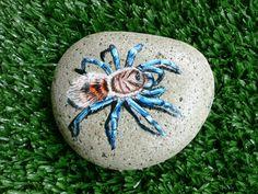 Rockpainting - Tarantula 0001 Sugar Skull Painting, Sticks And Stones, Fairy Doors, Love Painting, The Rock, Reptiles, Painted Rocks, Mythology, Bugs
