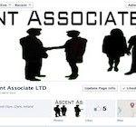 business consultants pinguisweb.com