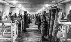 Women's concentration camp prisoners forced into manual labor.