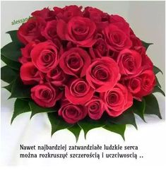 Show your love and affection towards your friends and family by sending them an exotic roses bouquet! We have vast experience to hand-deliver exotic and fresh flowers at their doorstep. Book them online now! Floral Wedding, Wedding Bouquets, Wedding Flowers, Flowers For You, Fresh Flowers, Rose Boquet, Greece Wedding, Beautiful Roses, Beautiful Bouquets