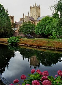 Cathedral Church of St. Andrew, Wells, Somerset, UK| Bernard Blanc - Flickr - Photo Sharing!