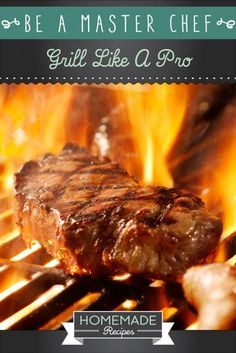 Be A Master Chef: Grill Like A Pro by Homemade Recipes at http://homemaderecipes.com/cooking-101/how-to-be-a-master-chef-in-10-days-be-a-grill-master/