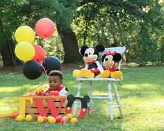 Two year old Mickey Mouse shoot.