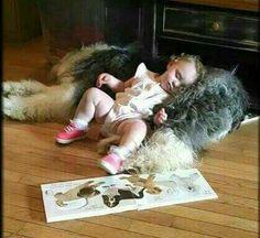 The sleep of the innocent!