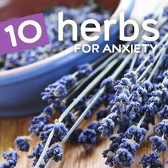 10 Natural Herbs for Anxiety and Stress. Quite a good read