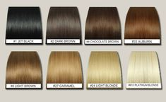 Image result for caramel hair colour chart