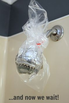 How to clean, descale, and unclog your shower head naturally! - The Creek Line House