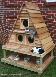 Cat house - when the cats spend the might outside they have somewhere to cuddle up.