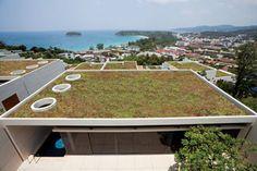 Transforma tu cubierta en una cubierta verde, Urbanscape