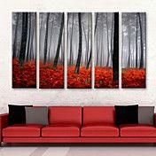 conjunto lienzo de 5 paisaje subió bosque en ... – USD $ 89.99