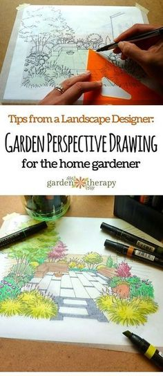 Garden Perspective Drawing is method that anyone can learn to draw a home garden for fun or to make a plan for future plantings. These tips from Landscape Designer and Illustrator make it easy to do at home.
