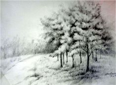 40 Incredible Pencil Drawings of Nature you have never seen before 34