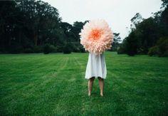 IdeaFixa » Flores gigantes