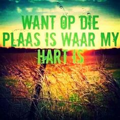 Hart Afrikaans Quotes, Qoutes, Sayings, Quotations, Quotes, Lyrics, Word Of Wisdom, Quote, Manager Quotes