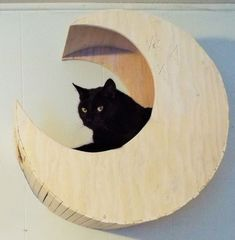 Made to Order- Modern Reclaimed Textile & Wood Crescent Moon Cradle White Washed Cat Bed Wall Perch by HomeofHom on Etsy https://www.etsy.com/listing/264628391/made-to-order-modern-reclaimed-textile #CatFurniture
