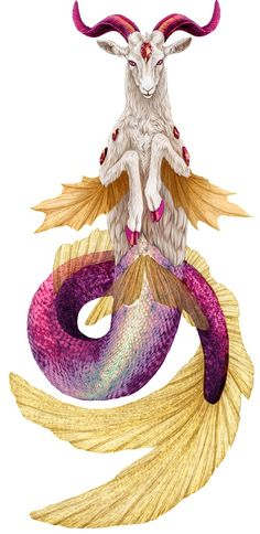 Pretty excited that my zodiac is basically a goat mermaid. I always just thought it was a regular goat. lol