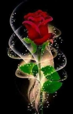 Search free flowers Ringtones and Wallpapers on Zedge and personalize your phone to suit you. Start your search now and free your phone Beautiful Rose Flowers, Flowers Gif, Beautiful Flowers Wallpapers, Love Rose, Pretty Wallpapers, Love Flowers, Beautiful Love Pictures, Beautiful Gif, Flower Images