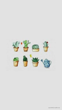 14 Best Cactus Lockscreens Images Cactus Cute Wallpapers