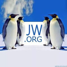 www.jw.org (Click for Home page). JW.ORG - the world's largest multi language website with FREE bible-based publications.