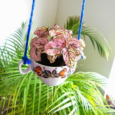 hanging teacup planter