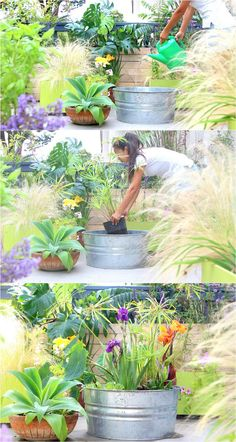 DIY Solar Fountain in 1 Hour! {with Pond Water Plants} Easy DIY Solar Fountain in 1 Hour! {with Pond Water Plants} - A Piece Of RainbowEasy DIY Solar Fountain in 1 Hour! {with Pond Water Plants} - A Piece Of Rainbow