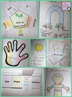 Kindergarten Science Notebook Activities-- fun printables for journals! $