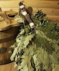 Правильный веник для бани: виды веников на фото, как заготавливать, сушить и хранить веники Saunas, Scandinavian, Culture