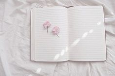 Image de flowers, book, and pink