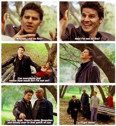 Angel: Why am I not on fire? Hey, I'm not on fire! Can everybody just notice how much fire I'm not on? Let's start gathering branches, brush, anything that'll cover the car. Hey, look, there's some over in that patch of sun. I'll get 'em. #Angel