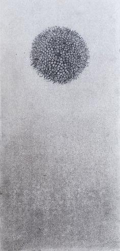 Pica- Pica | Dibujo de Marta de la Sota | Flecha