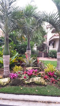 Landscaping Desert Backyard River Rocks Ideas - All For Garden Front Yard Garden Design, Bromeliads Landscaping, Pool Landscaping, Landscape Design, Pool Landscape Design, Backyard Landscaping Designs, Palm Trees Landscaping, Desert Backyard, Tropical Landscaping